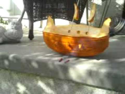 Cannons on ths pumpkin pirate ship