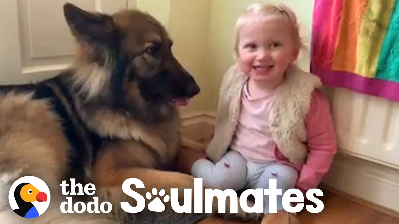 Watch This Girl Grow Up With Her Best Friend In Adorable Time Lapse   The Dodo Soulmates