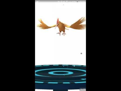 Pokemon go evolving - 30 minutes - level up