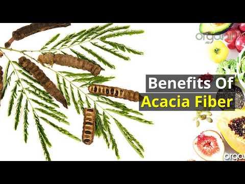 The Benefits of Acacia Fiber