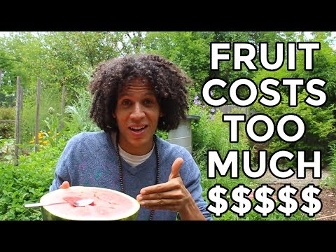 The Raw Vegan Diet Is WAY Too Expensive