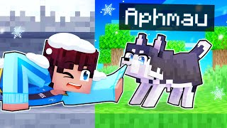 Playing As A BRAVE Husky In Minecraft!