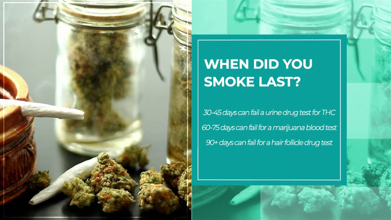 How long does Marijuana Stay in Your System