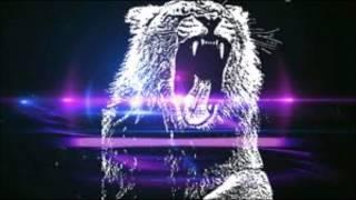 Martin Garrix - Fucking animals (LL. remix)