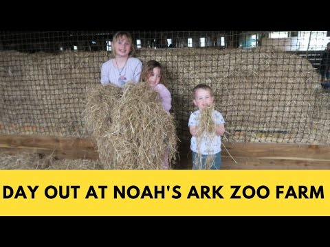 A Day Out At Noah's Ark Zoo Farm   We Made This Life