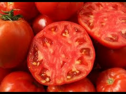 HOW TO GET GOOD TOMATO SEEDS FOR PLANTING!