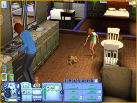 Sims 3 cat playing with laser