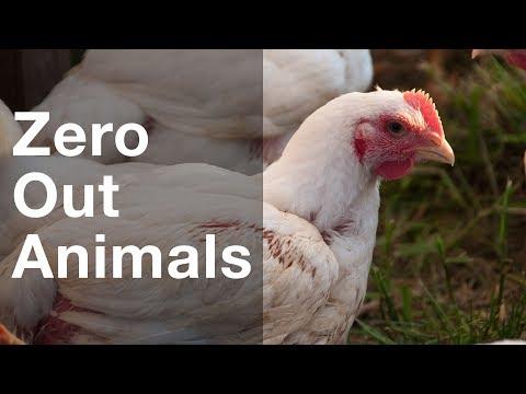 Instafarm: Zeroing Out on Animals