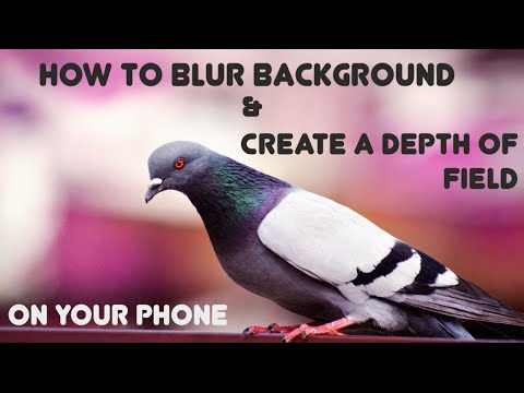 How to Blur Background of a picture and Create a Depth of Field