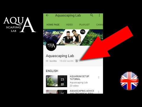 How to ENABLE / DISABLE YouTube App Notification on Device, Phone and Tablet By Aquascaping Lab