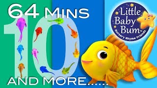 Counting Fish Song | Plus Lots More Nursery Rhymes | 64 Minutes Compilation from LittleBabyBum!