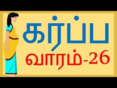 Pregnancy   Week by Week   Tamil   Week 26