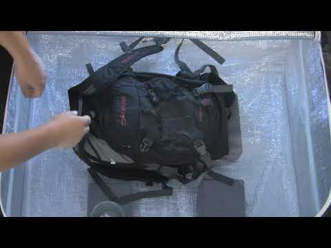 ZappBug Kills Live Bed Bugs in Books, Backpacks and Shoes