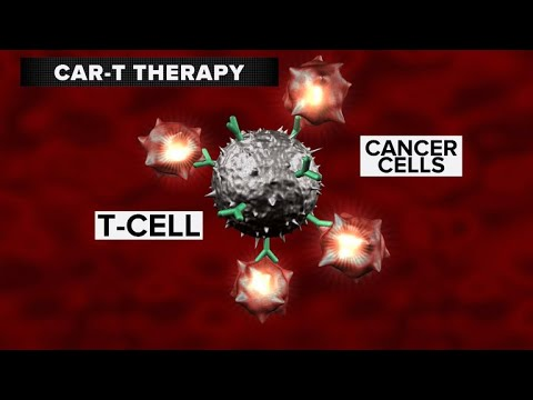 FDA approves breakthrough CAR-T therapy for leukemia