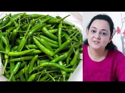 How to Store GREEN CHILLIES for MONTHS I Store GREEN CHILLI