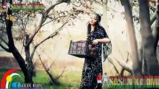 Aziz Waisi 2013    Heanar Heanar     Official Video Clip HD
