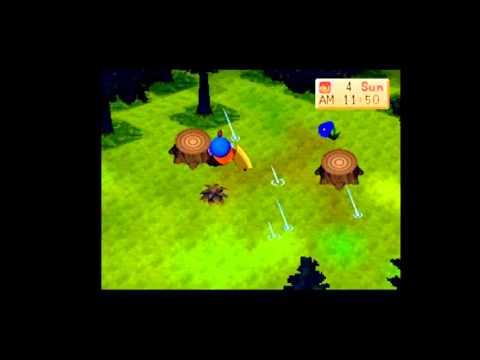 Let's Play Harvest Moon BtN 10