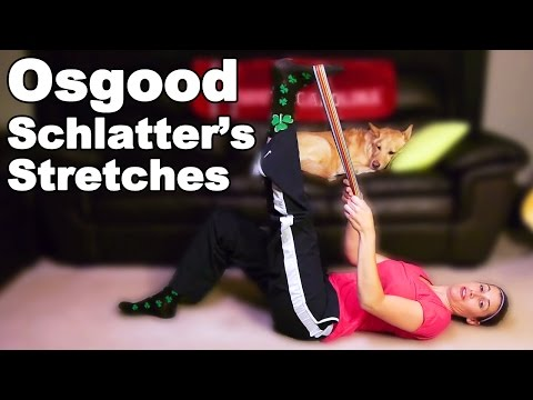 Osgood Schlatter Knee Pain Stretches & Exercises - Ask Doctor Jo