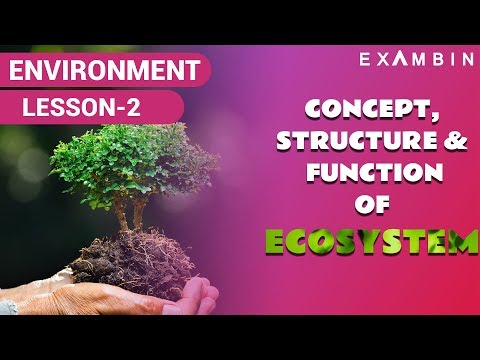 Concept of Ecosystem upsc,  Abiotic and Biotic factors, Crash Course ecology