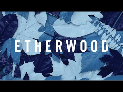 Etherwood - For A Time I Was You