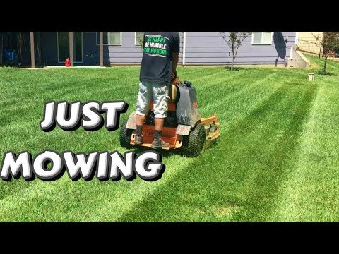 Relaxing Lawn Mowing Footage, Mow Tall Grass and Wet Grass, Slow Motion, Drone, Stripes