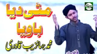 MITTI DEYA BAWIYA - MUHAMMAD JAHANZAIB QADRI - OFFICIAL HD VIDEO - HI-TECH ISLAMIC