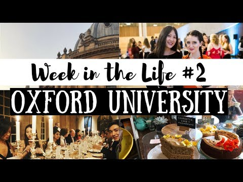 BAME ALUMNI MEAL & WE GOT A TAXI TO HASSAN'S | WEEK IN THE LIFE AT OXFORD UNIVERSITY | viola helen