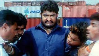 Junior NTR Narasimhudu Movie Best Action Scenes || Jr NTR,Ameesha Patel,Sameera Reddy