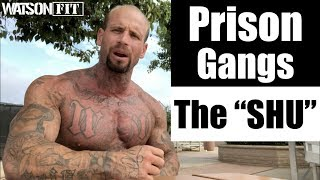 "Prison Gangs- The ""SHU"""