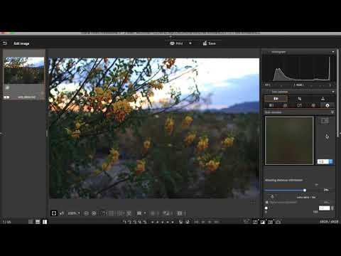 Canon Digital Photo Professional 4 - Free Photo Editing Software