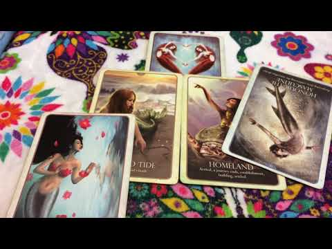 Libra Express love reading, I'm Tired of being a piece of meat. 5/28-6/4