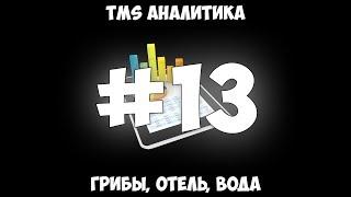Download TMS Аналитика #13 - Грибы, отель, вода. Video