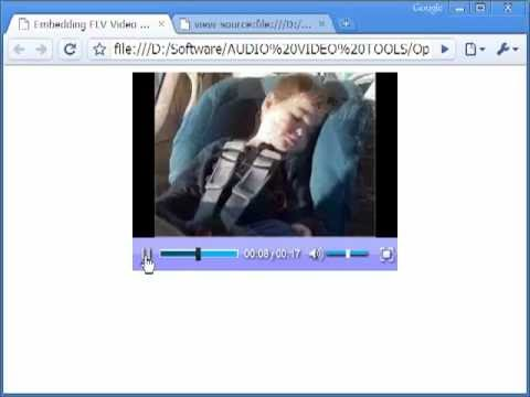 How To Embed SWF, FLV, & MP4 Videos In A Web Page