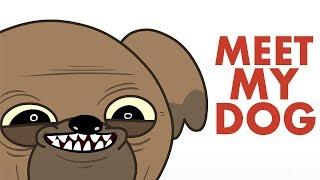 Meet My Dog - Animated