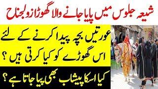 Zuljanah Ki Tareekh Aur Haqeeqat