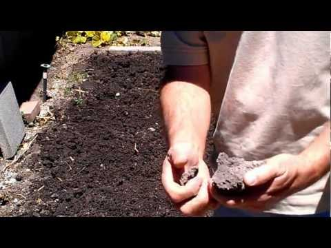 Using Soil Restore to soften hard clay soil into soft workable soil
