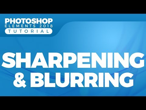 How to Sharpen and Blur a Photo Using Adobe Photoshop Elements 2018