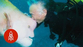 Aquatic Affection: How a Scuba Diver Found a Good Friend Under the Sea