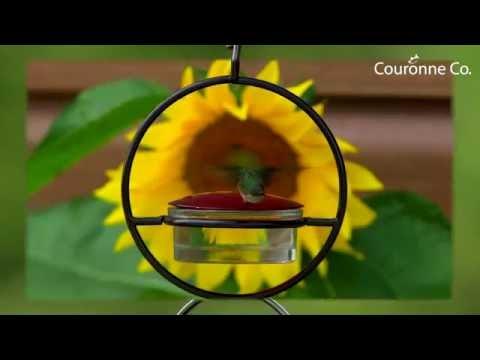 "Couronne Co  7"" Hanging Sphere Hummingbird Feeder (M045-301)"