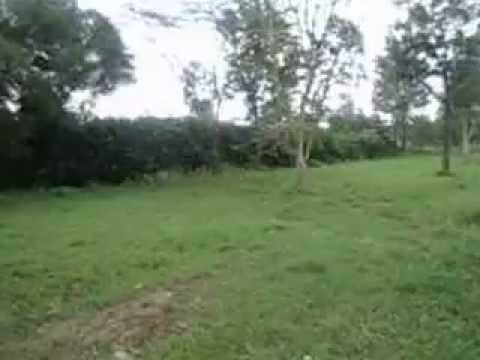 undeveloped residential Land for Sale in Kenya Kerarapon Karen