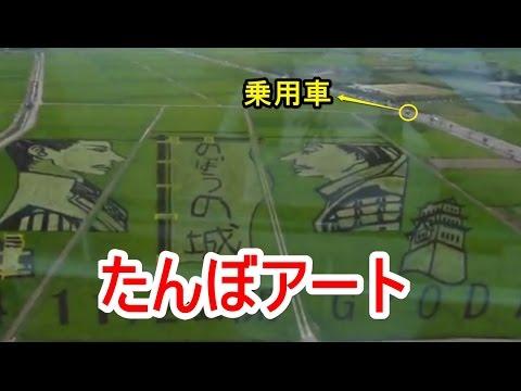 Rice Paddy Art 日本一の田んぼアート