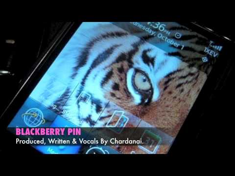 Chardanai: Blackberry Pin *** (SOCA 2010 / 2011)