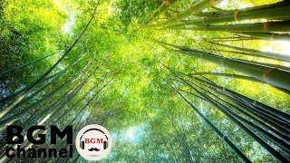 Relaxing PIano - Soft Easy Listening Instrumental Music