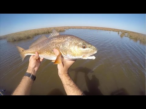 Kayak Fishing Tips - Fishing Schooling Redfish in Shallow Water