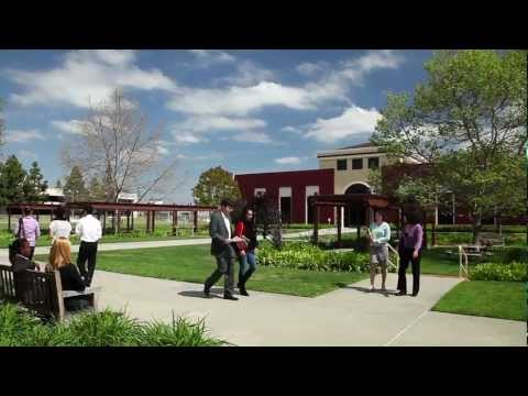 Are scholarships offered by Whittier Law School?