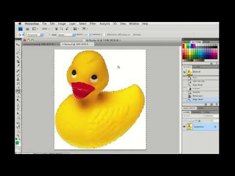 Photoshop CS4 Filling a selection