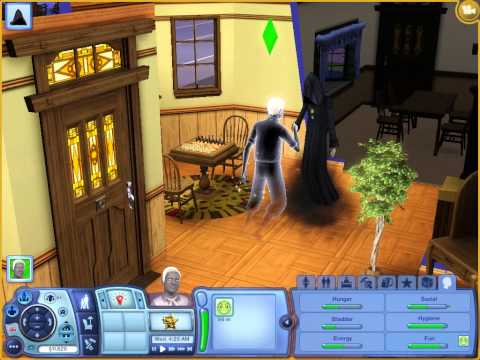 Sims 3-What happens when the last sim dies in household