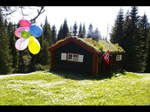 My cottage: Summer edition