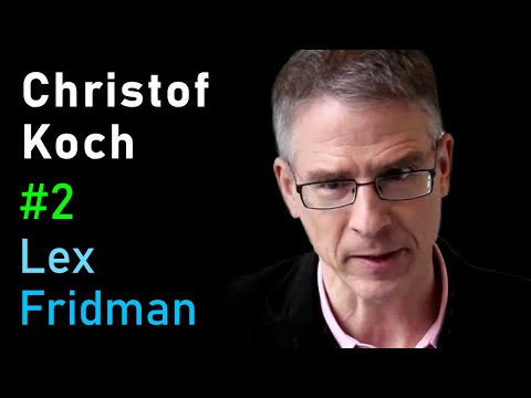 MIT AGI: Consciousness (Christof Koch)
