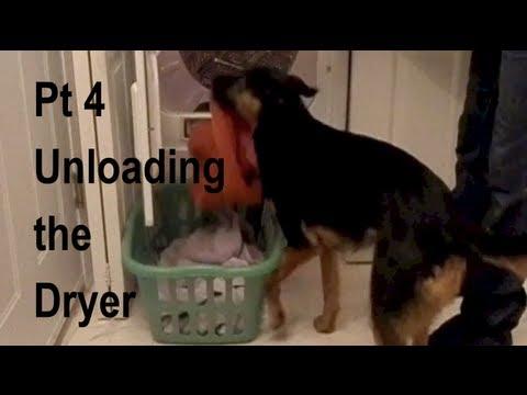 Unloading the Dryer (Dog Doing Laundry) Part 4
